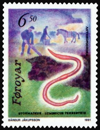 Faroe_stamp_208_anthropochora_-_earthworm_(Lumbricus_terrestris)